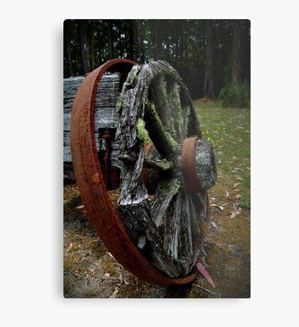 Mossy Wagon Wheel,Otway Ranges Metal Print