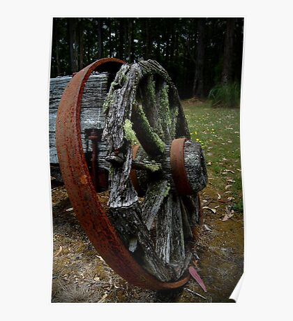 Mossy Wagon Wheel,Otway Ranges Poster