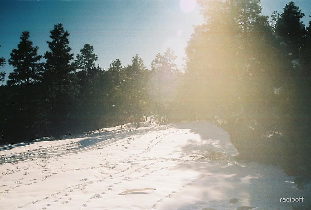 arizona light by radiooff