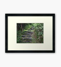 Stairs to somewhere Framed Print