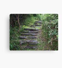 Stairs to somewhere Canvas Print