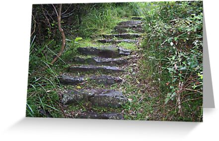 Stairs to somewhere by Matthew Walmsley-Sims
