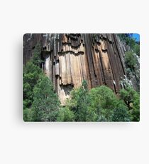 Sawn Rocks (Mt Kaputar National Park, Northwest NSW) Canvas Print