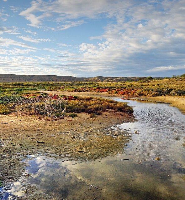 Coastal Creek by Harry Oldmeadow