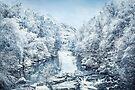 Frozen Memories by Evelina Kremsdorf