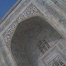 Taj by ShootingSardar