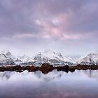 Purple Pastels by Mieke Boynton