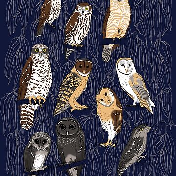 AUSTRALIAN OWLS by pavlovais