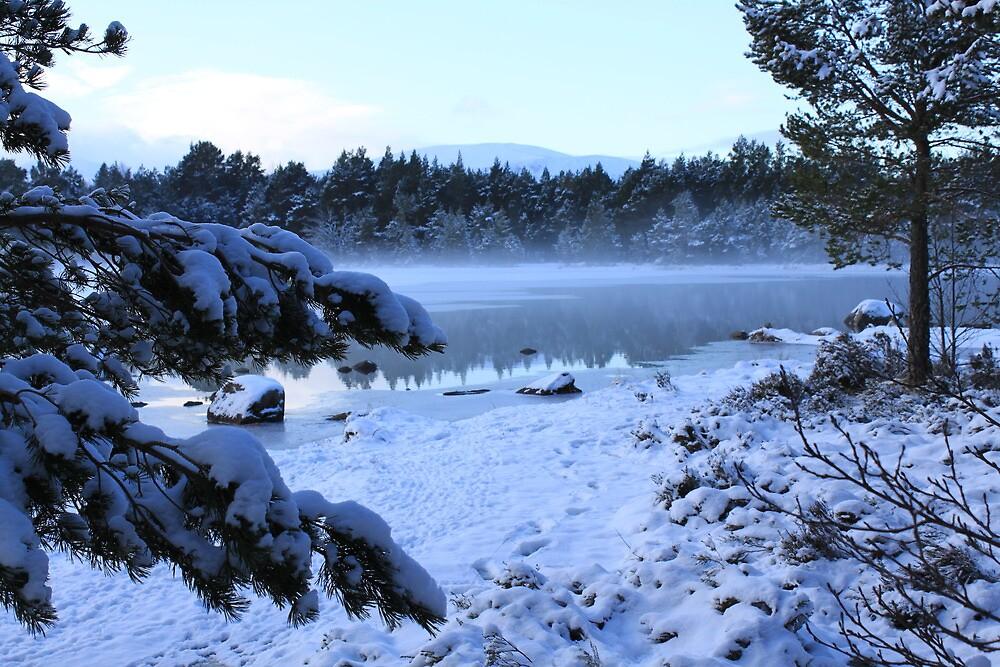Loch Morlich by Mike Paget