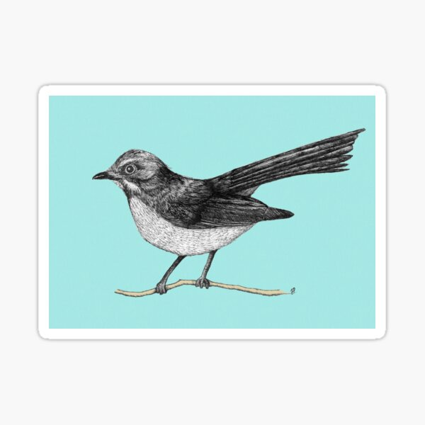 Willy Wagtail Sticker