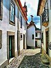 Viseu, Portugal by T.J. Martin