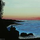 Ocean view by Dan Wagner