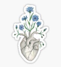 Floral Heart: Human Anatomy Cornflower Mothers Day Gift Sticker