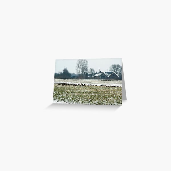 Winter farmland with geese Greeting Card