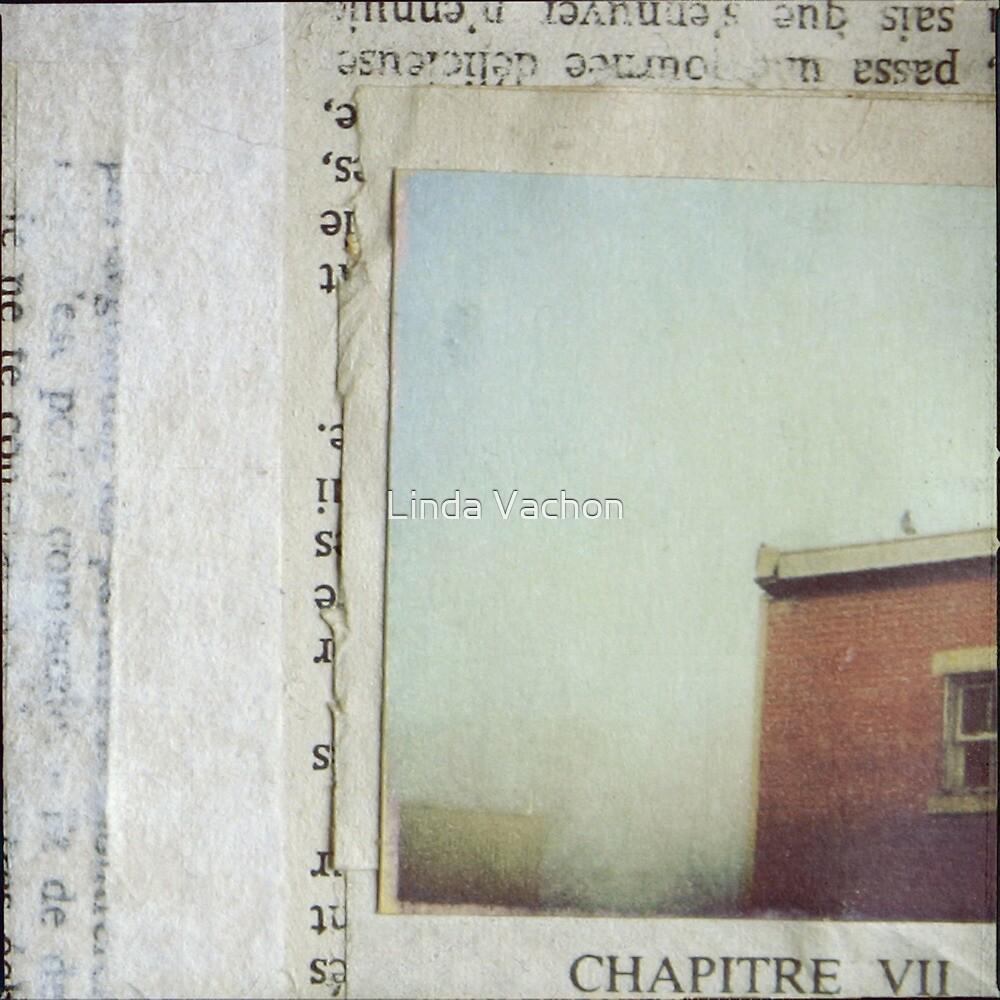 VII by linda vachon