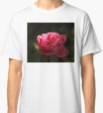 Soft Red Rose In The Evening Light Classic T-Shirt