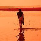 Strolling through orange bliss by Michael Brewer