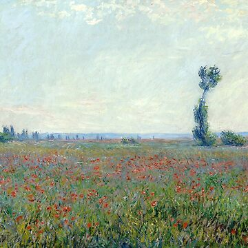 Poppy Field, Claude Monet by fourretout