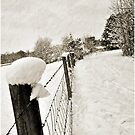 A Winter Fence by Jeff Ore
