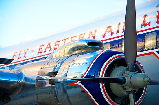 Fly Eastern Airlines by Bill Wetmore
