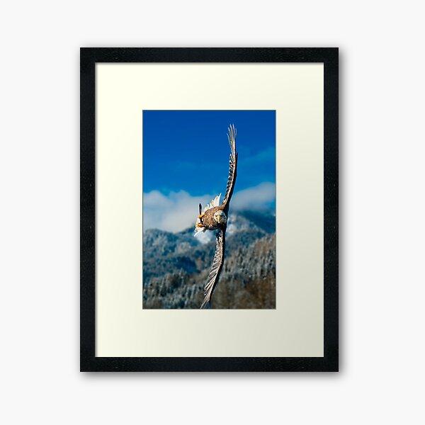 Crosswind Framed Art Print