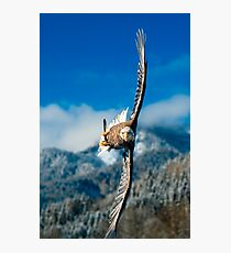 Crosswind Photographic Print