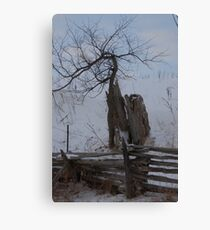 lived large Canvas Print