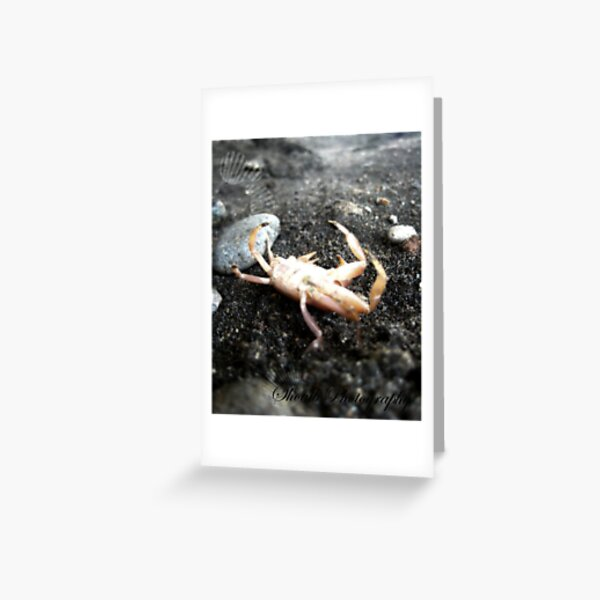 feeling crabby  Greeting Card