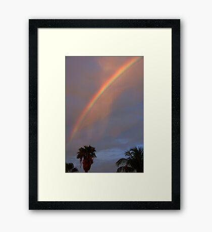 Tropical Rainbow Framed Print