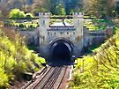 Clayton Tunnel in Sussex England by Dorothy Berry-Lound