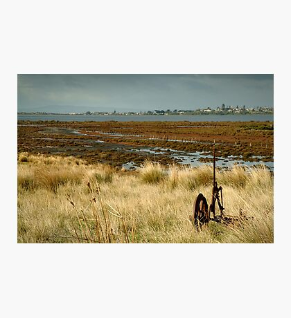 Beacon Point, view to Queenscliff Photographic Print