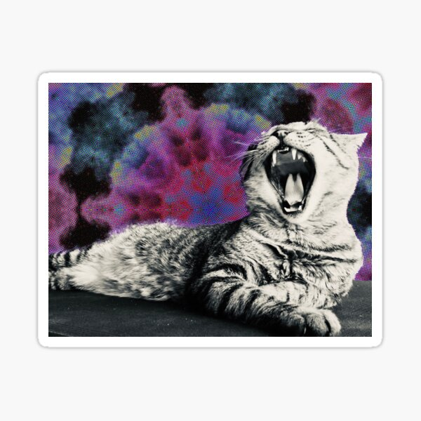 Psychedelic cat Sticker