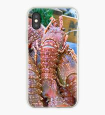 Spiny Lobsters iPhone Case