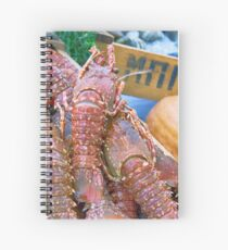 Spiny Lobsters Spiral Notebook
