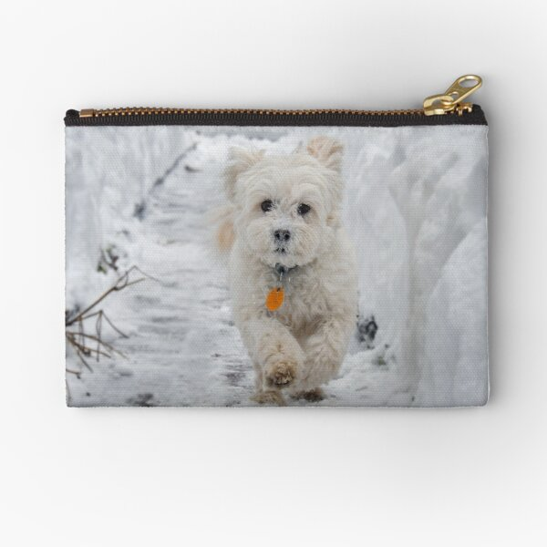 White Maltipoo dog running in snow Zipper Pouch