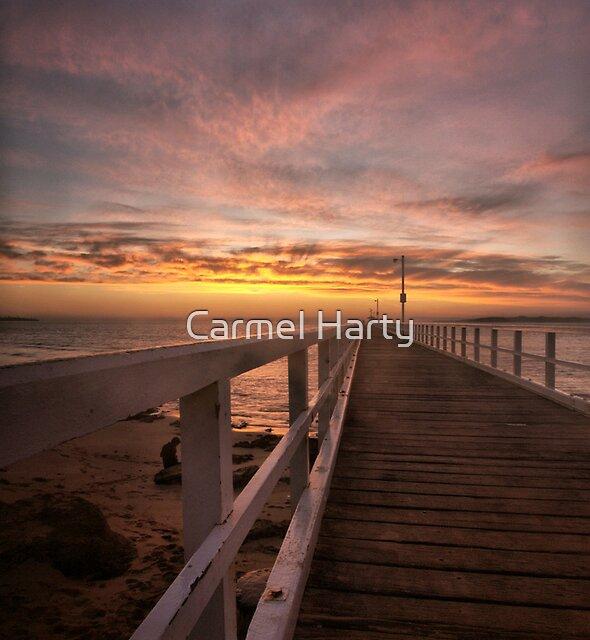 Morning walk by Carmel Harty