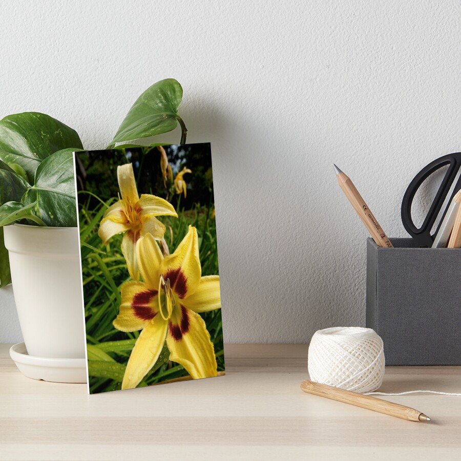 Yellow Daylily from the Gardens at Lake Merritt Art Board Print