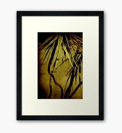 Where the light is... Framed Print