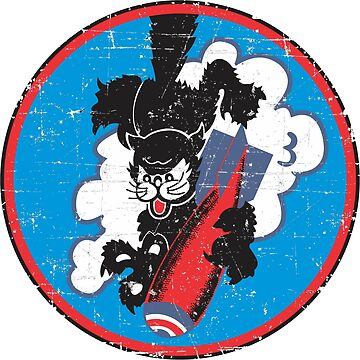 355th Bombardment Squadron - Grunge Style by pzd501