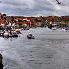 Whitby Marina by Tom Gomez