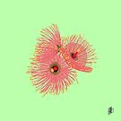 Pink and Lime wattle blossom  by Emilie Otto