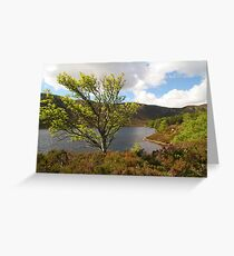 Loch Muick in Spring time Greeting Card