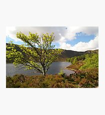Loch Muick in Spring time Photographic Print