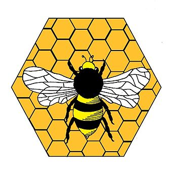 Bee Hive by bkidesigns