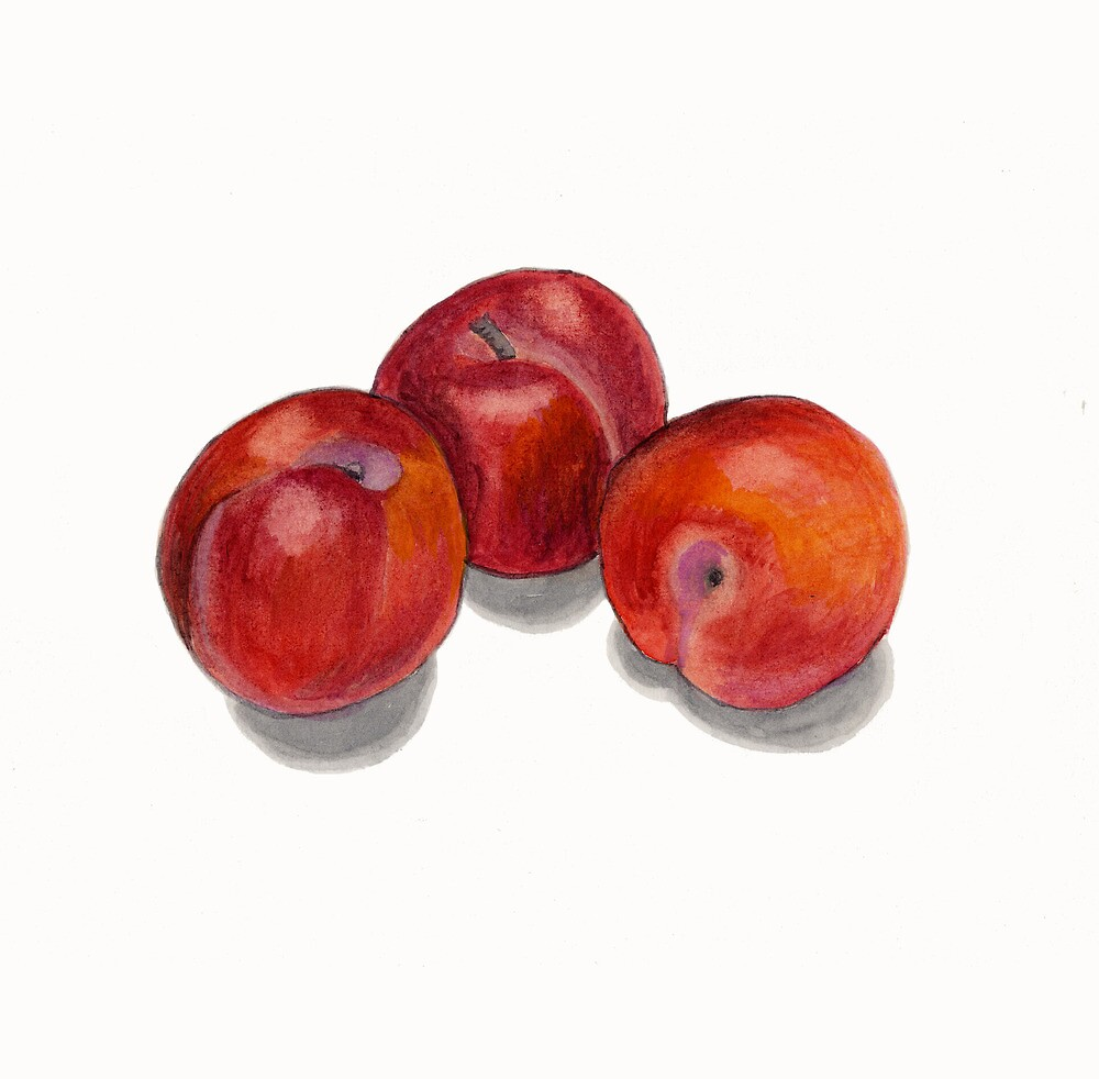 Three Juicy Plums by Maureen Sparling