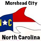 Morehead City Dolphin by barryknauff