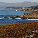 Colorful Cambria by eyes4nature