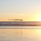 Cayucos sunset by eyes4nature