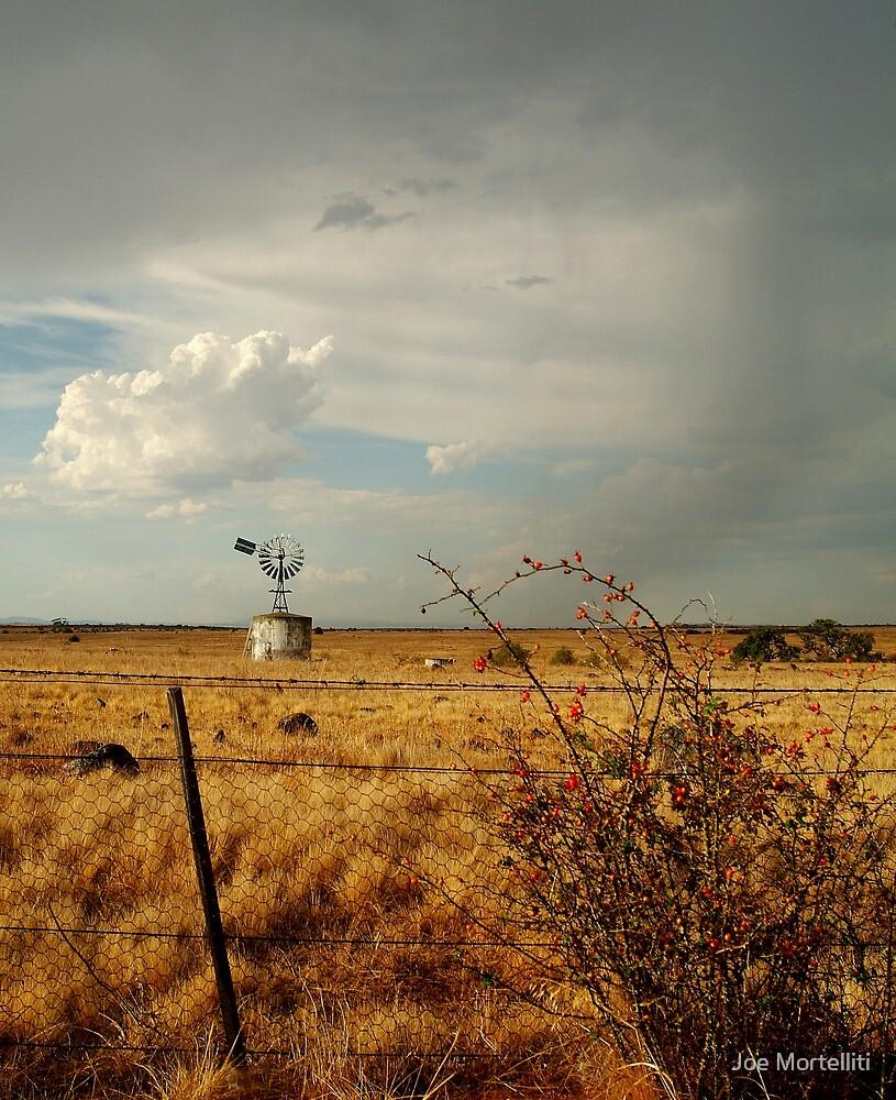 Passing Rain,Rural Geelong by Joe Mortelliti
