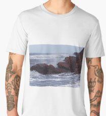 ROCKS AND WATER Men's Premium T-Shirt